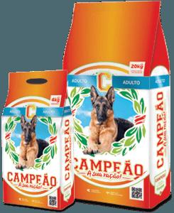 campeaoadulto20