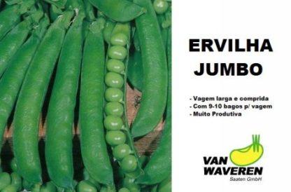 Ervilha Jumbo 1/2 estaca (kg)