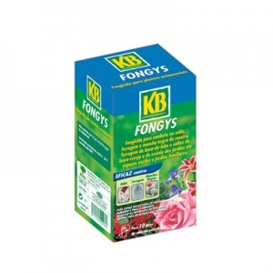 KB fongys concentrado 100ml