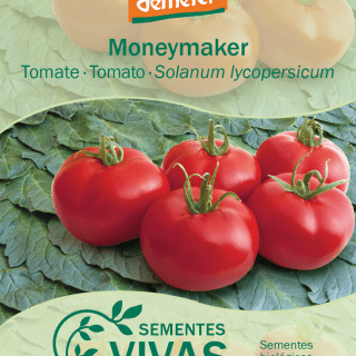 tomate-moneymaker-320×320