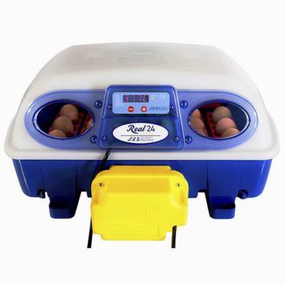 Chocadeira Real 24 Ovos Automática
