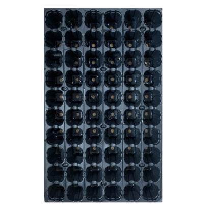 Tabuleiro Plantação – 60 alvéolos