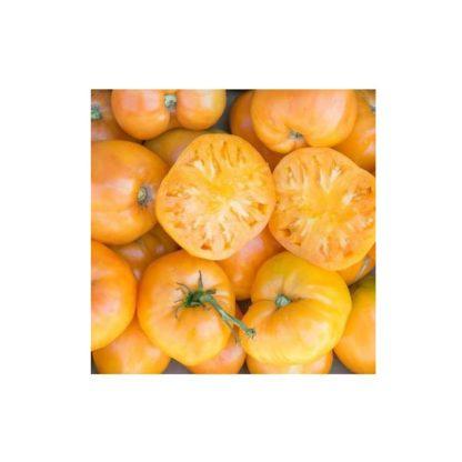 Sementes Tomate Coração de Boi Laranja Bio