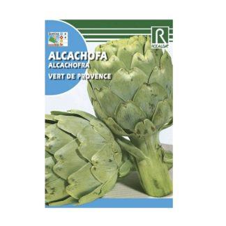 Alcachofra Vert de Provence