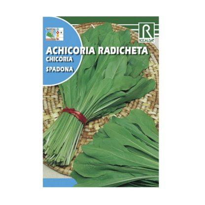 Chicória Radicheta