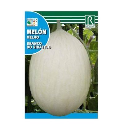 Melão Branco do Ribatejo
