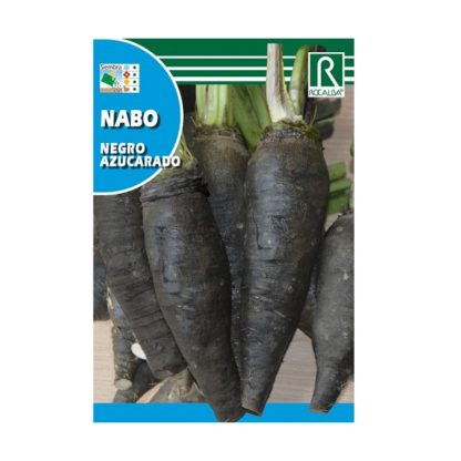 Nabo Negra açucarado