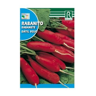 Rabanete Dátil Rojo