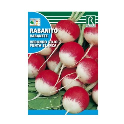 Rabanete Redondo Rojo de Ponta Branca