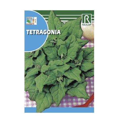 Tetragonia