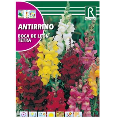 Antirrino Boca de Leão Tetra Variado